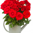 Bouquet of red  roses in watering can — Stock Photo