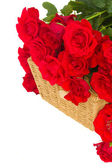 Bouquet of scarlet roses with basket close up — Stock Photo