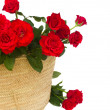 Bouquet of red roses in basket close up — Stock Photo