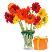 Gerbera květiny do vázy s dárkový box — Stock fotografie