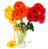 Bouquet of gerbera flowers in vase — Stok fotoğraf