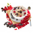 The oat flakes with berries — Stock Photo