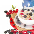 The oat flakes porridge with berries — Stock Photo