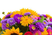 Colorful bunch of autumn flowers border — Stock Photo