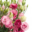 Bunch of  pink eustoma flowers — Stock Photo