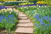 Stone path winding in a garden — Stock Photo