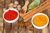 Powdered curry and red pepper — Stock Photo