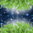 Fir tree frame with stars — Stock Photo