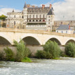 Amboise castle and old bridge, France — Stock Photo