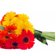 Stock Photo: Gerberflowers posy