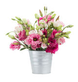 Pink eustoma flowers in pot — Stock Photo