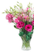 Pink eustoma flowers in glass vase — Stock Photo