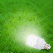Illuminated light bulb on grass — Stock Photo