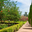 Stock Photo: Spring gardens at Alcazar, Cordoba, Spain