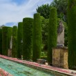 Gardens at the Alcazar in Cordoba, Spain — Foto de Stock