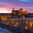 Cathedral and roman bridge at night, Cordoba — Stock Photo #34221907