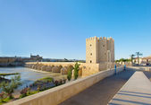 Embankment of Guadalquivir river, Cordoba, Spain — Stock Photo