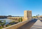 Ufer des Guadalquivir Flusses, Cordoba, Spanien — Stockfoto