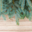 Fir tree on wooden background — Stock Photo