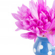 Posy of meadow saffronin vase — Stock Photo