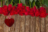 Row of roses with heart — Stock Photo