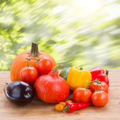 Fall ripe of vegetables on table — Stock Photo