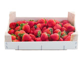 Strawberry in crate — Foto Stock