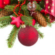 Green fir tree and red christmas ball close up — Stock Photo