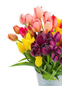 Bunch of tulips flowers close up — Stock Photo