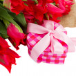 Pile of red  tulips with gift box — Stok fotoğraf