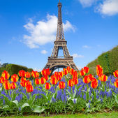 Eiffel Tower at spring, France — Stock Photo