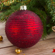 Red ball decoration and fir tree — Stock Photo