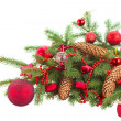 Evergreen fir tree and red christmas ball — Stock Photo