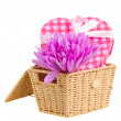 Basket with crocus flowers  and gift box — Stock Photo