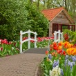 Stock Photo: Hut in spring