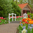 Hut in a spring — Stock Photo
