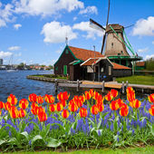 Dutch windmill of Zaanse Schans — Stock Photo