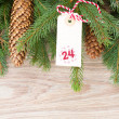 Evergreen tree with cones and christmas tag — Stock Photo