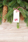 Evergreen tree with cones and christmas tag — Foto de Stock