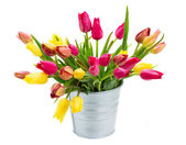 Pot with pink and yellow tulips flowers — Stock Photo
