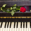 One red rose on piano — Stock Photo #36757637