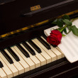 One red rose with notes paper on piano — Stock Photo