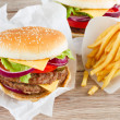 Big burger with french fries — Stock Photo #36869891