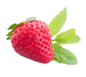 Single raw strawberry — Foto Stock