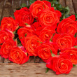 Fresh orange  roses in water droplets — Stock Photo