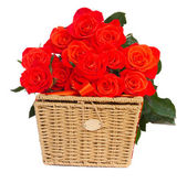 Bouquet of fresh orange roses with basket — Stock Photo