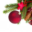 Evergreen tree and red christmas ball close up — Stock Photo