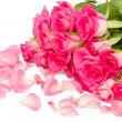 Tender pink  roses bouquet with petals — Stock Photo