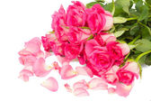 Tender pink roses bouquet with petals — Photo