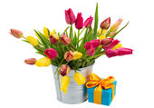 Pot with pink and yellow tulips with gift box — Stock Photo
